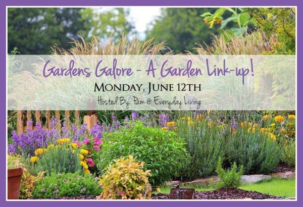 Gardens Galore- A Garden Link Up!!