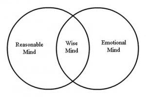 Printables Wise Mind Worksheet wise mind worksheet abitlikethis lyres musings mindfulness monday mind