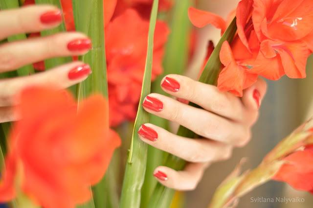 Лак для ногтей Nogotok Style Color