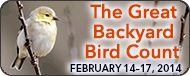 http://www.birdcount.org