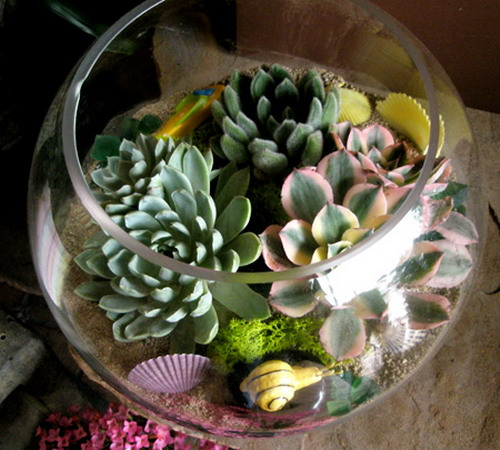 Succulents Garden Ideas Stunning succulent gardens the cottage market how about a terrarium hop on over to shelterness for tons and tons of ideas workwithnaturefo