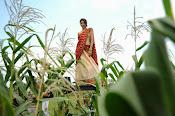 Tanvi vyas Latest Photos in Half Saree-thumbnail-14