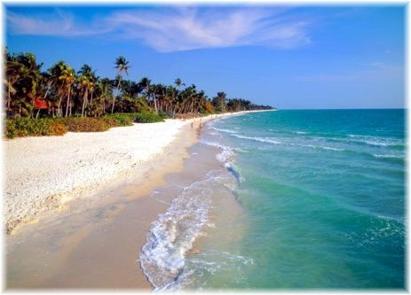 Top  Things To Do In Melbourne Beach Fl