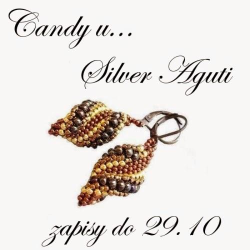 Candy u Silver Aguti