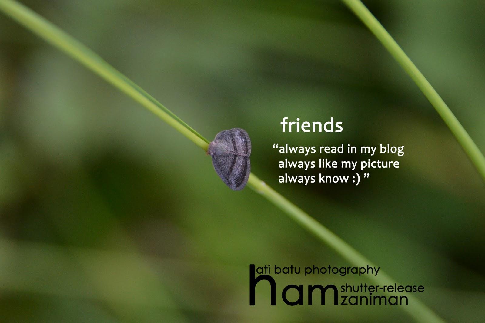 Hamzani Dahaman~cerita tentang gambar~
