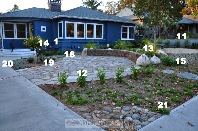 Getting the front yard planted organizing made fun for Front yard landscaping plants