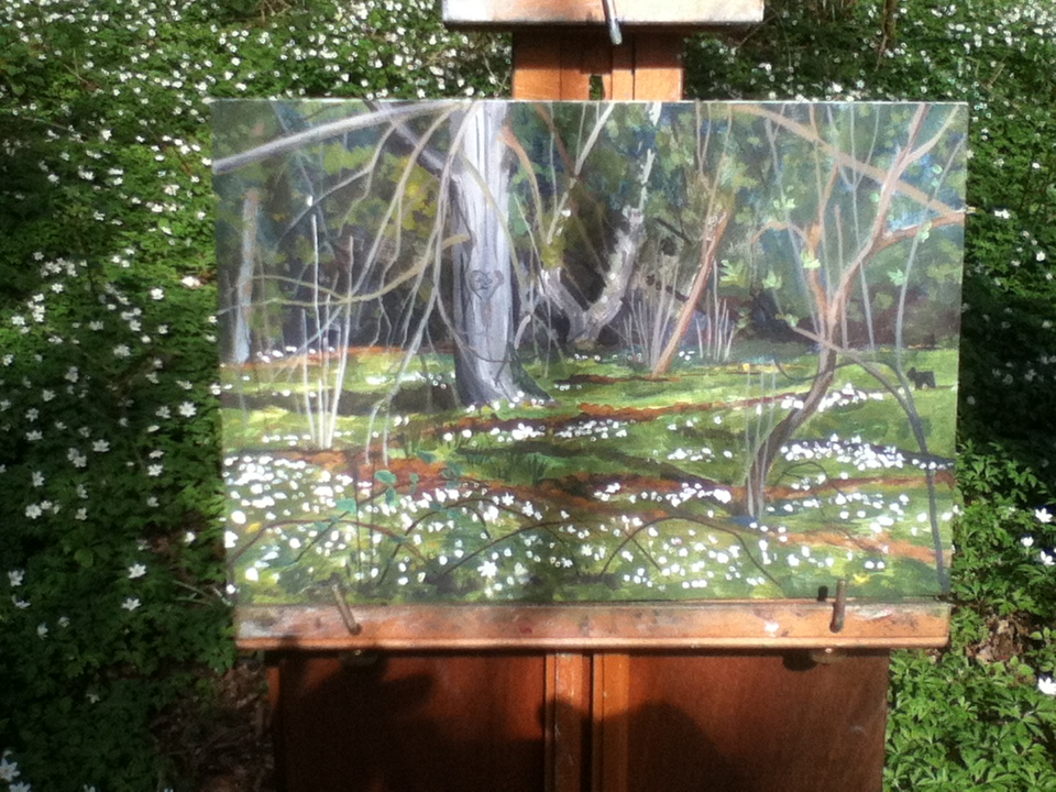 VIDEO Plein air demo