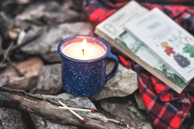 Best Of DIYs DIY Campfire Scented Mug Candle Poppytalk