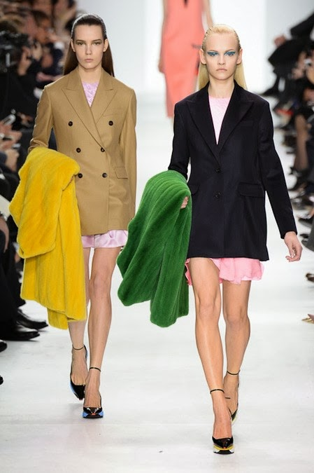Christian Dior Fall 2014 Paris Fashion Week by Cool Chic Style Fashion