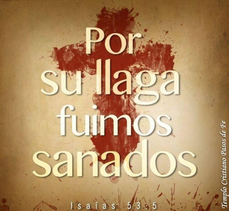 Sanos en Cristo