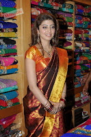 Pranitha in Lovely Kanjiwaram Saree ((23)000 009.jpg