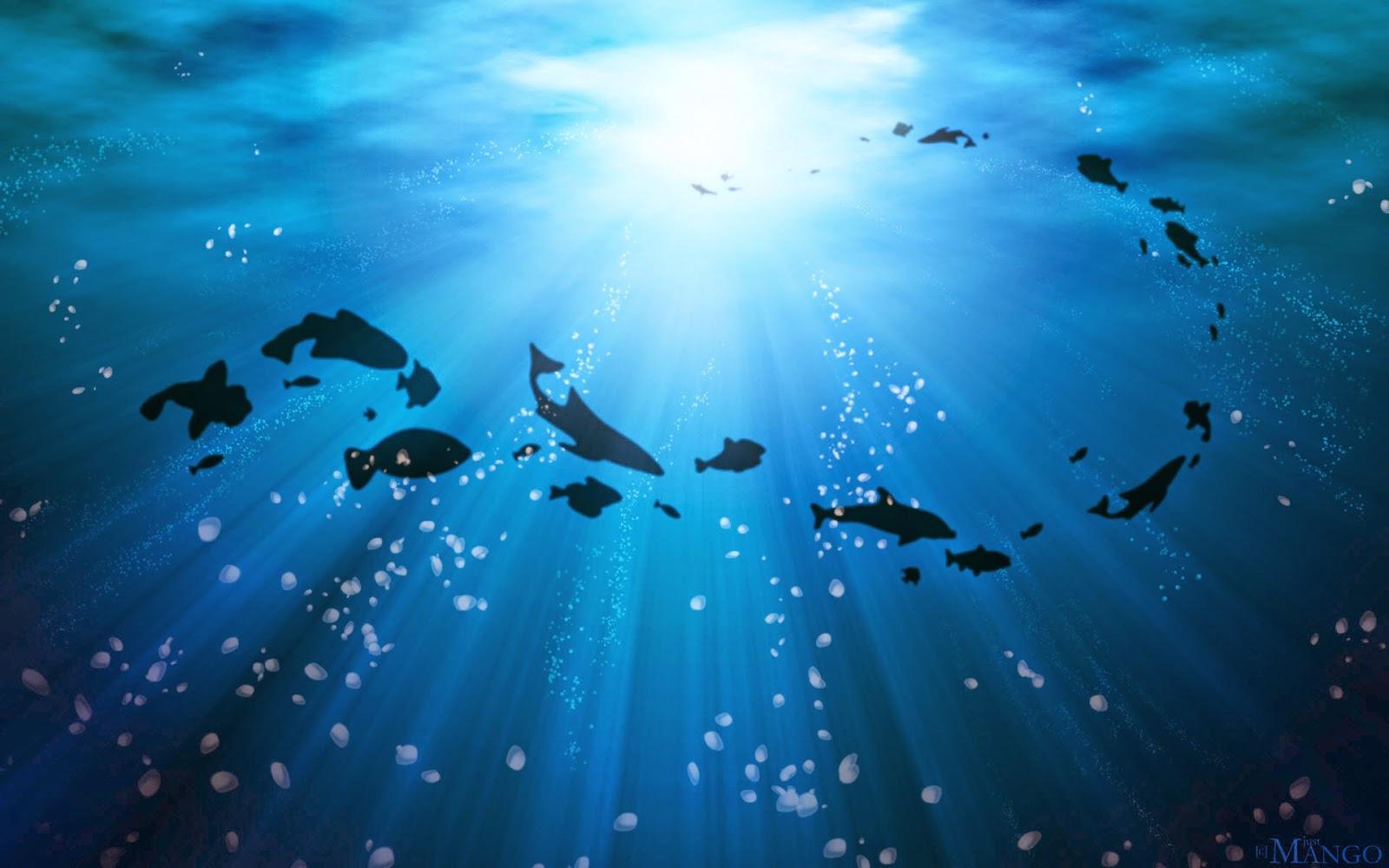 Life under the ocean wide
