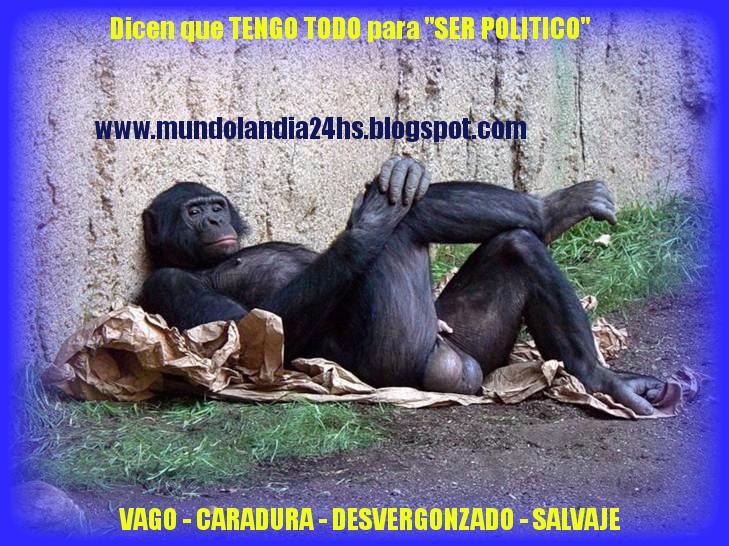 """""""MI PRIMO"""" Futuro """"CANDIDATO POLITICO """" tiene TODO EL GLAMOUR para EL GRAN CURRRO"""