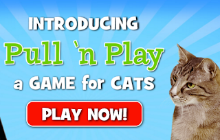 https://www.gamesforcats.com/