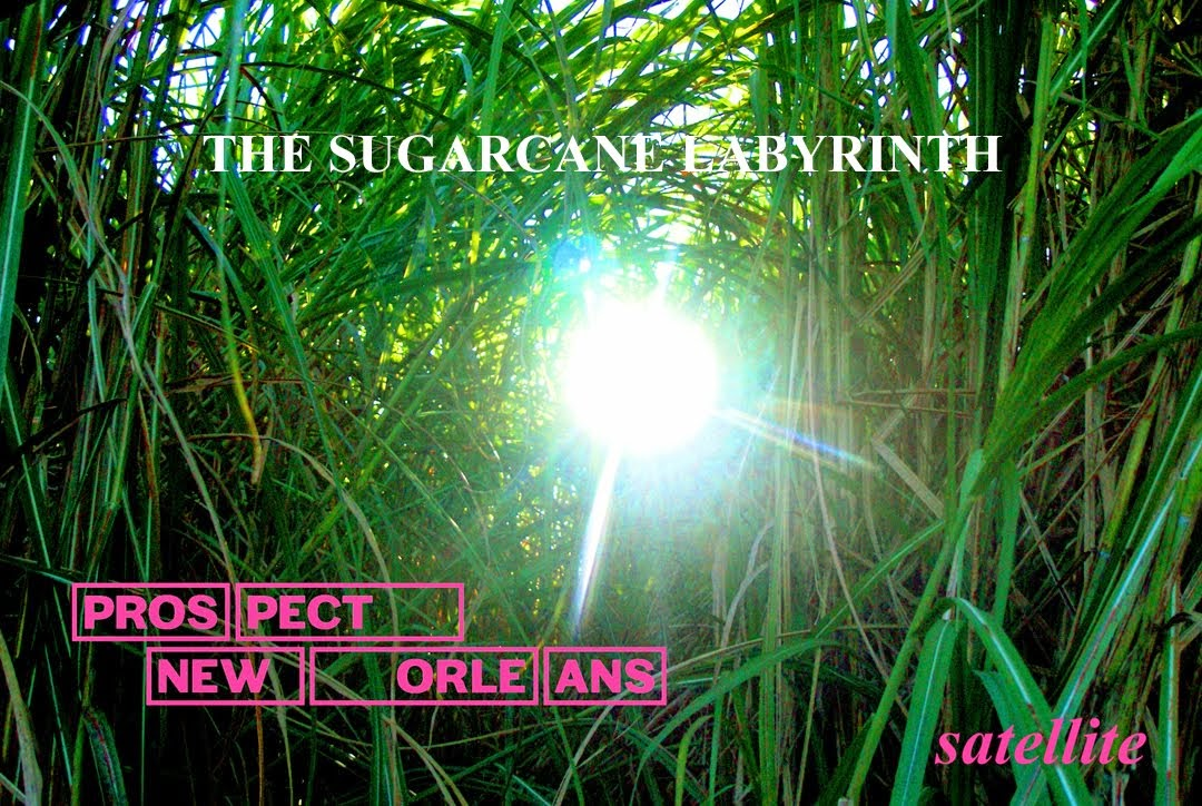THE SUGARCANE LABYRINTH