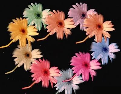 gifs de flores hermosas