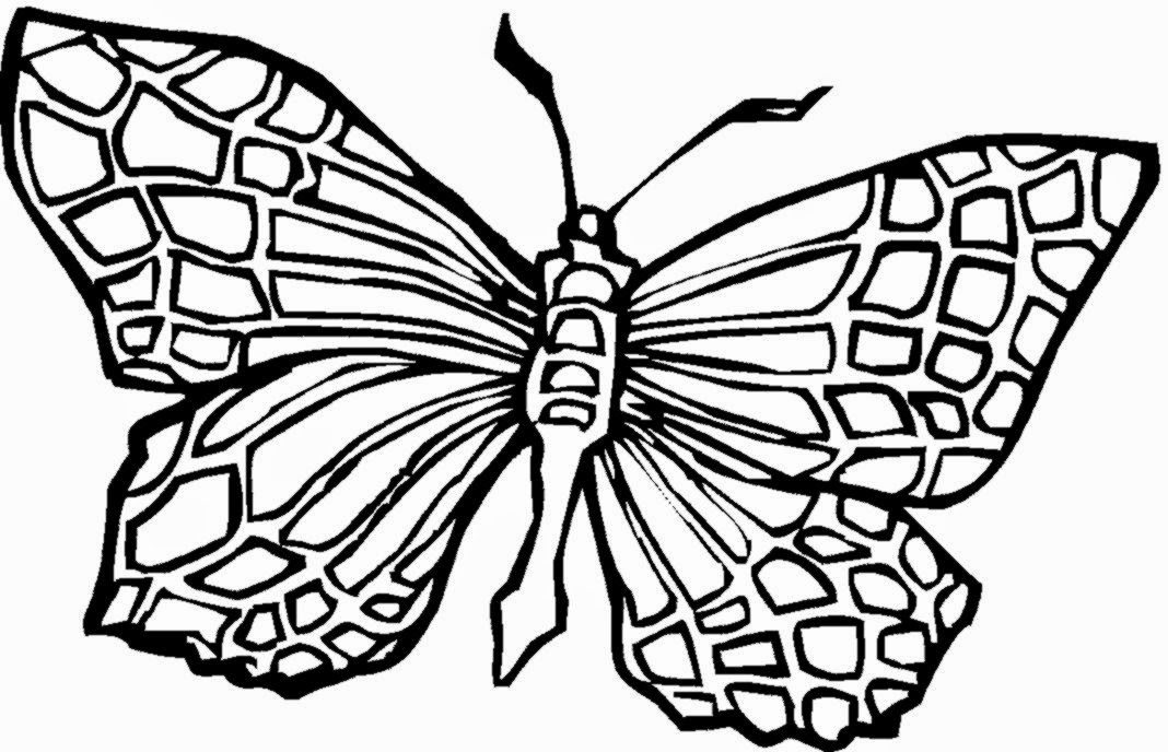 Butterfly coloring sheets free coloring sheet for Free printable coloring pages butterflies