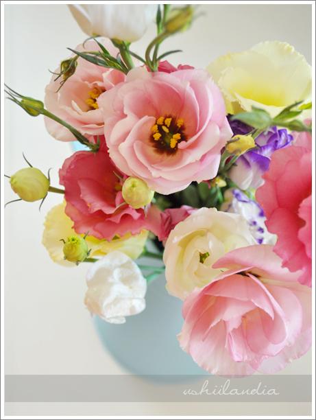 letni bukiet / summer flowers