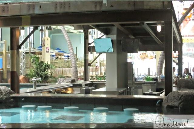 Inside Look New Camelback Lodge Aquatopia Indoor Waterpark Flyboys Swim Up Bar