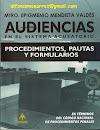 AUDIENCIAS DESARROLLO PROCEDIMIENTO