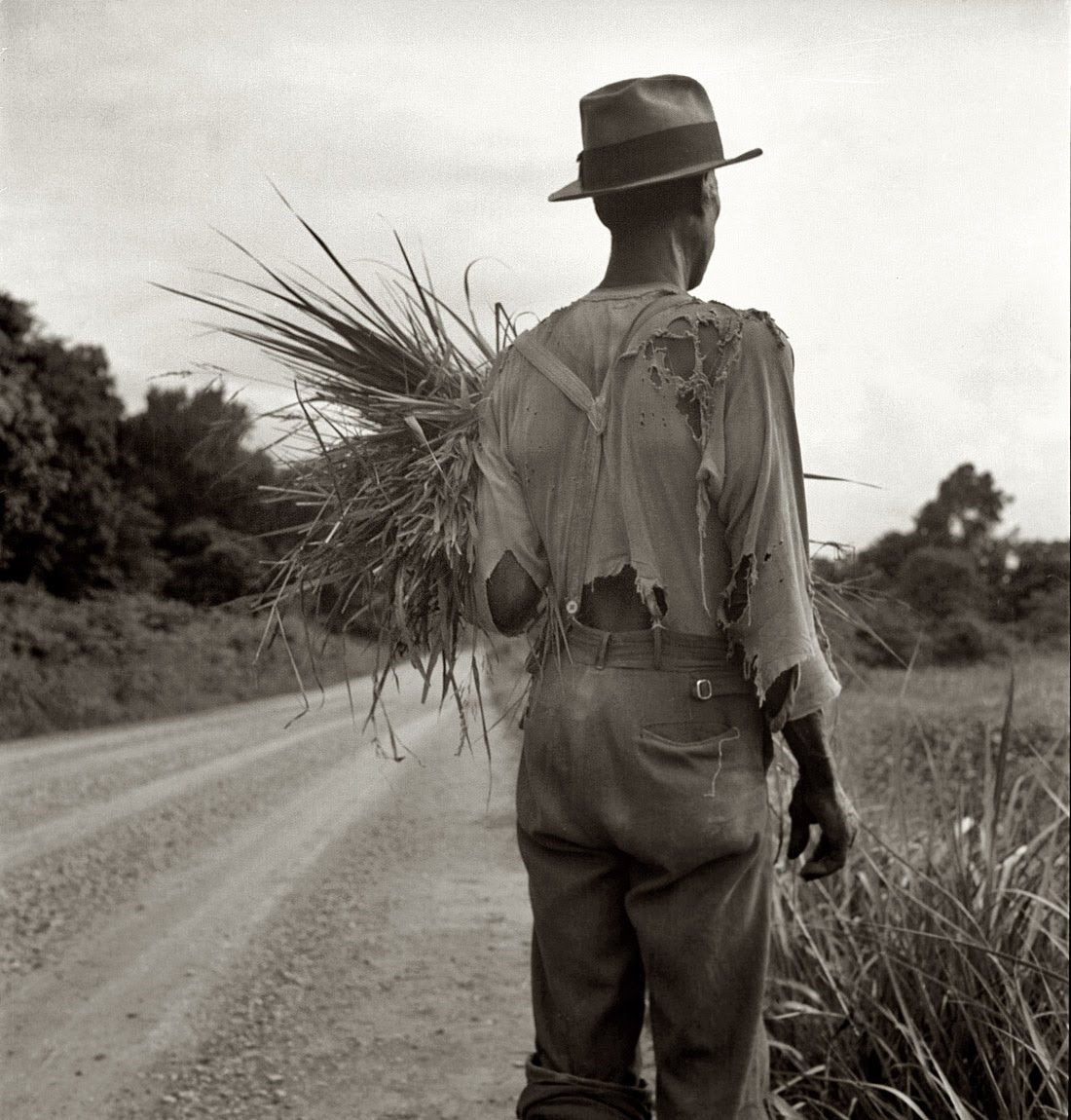 dorothea lange a photographer of a Dorothea lange: a life beyond limits presents us with a portrait of the artist as a woman in her fascinating new biography of photographer dorothea lange.
