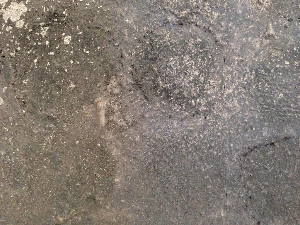 Gribok der Nägel der Beine die Onychomykose die Behandlung