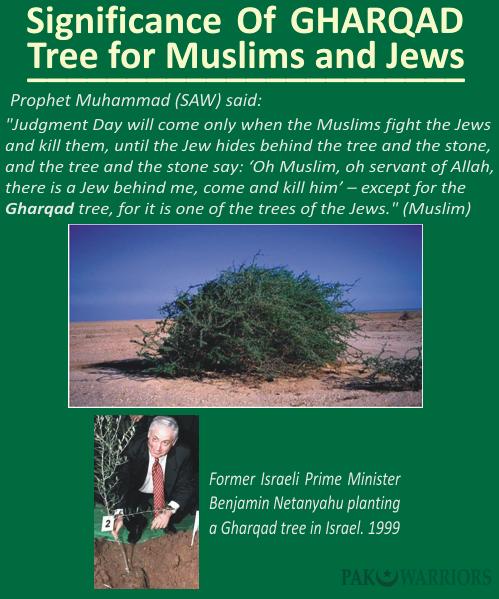 Akhir Zaman, Pokok Yahudi Dijual Online