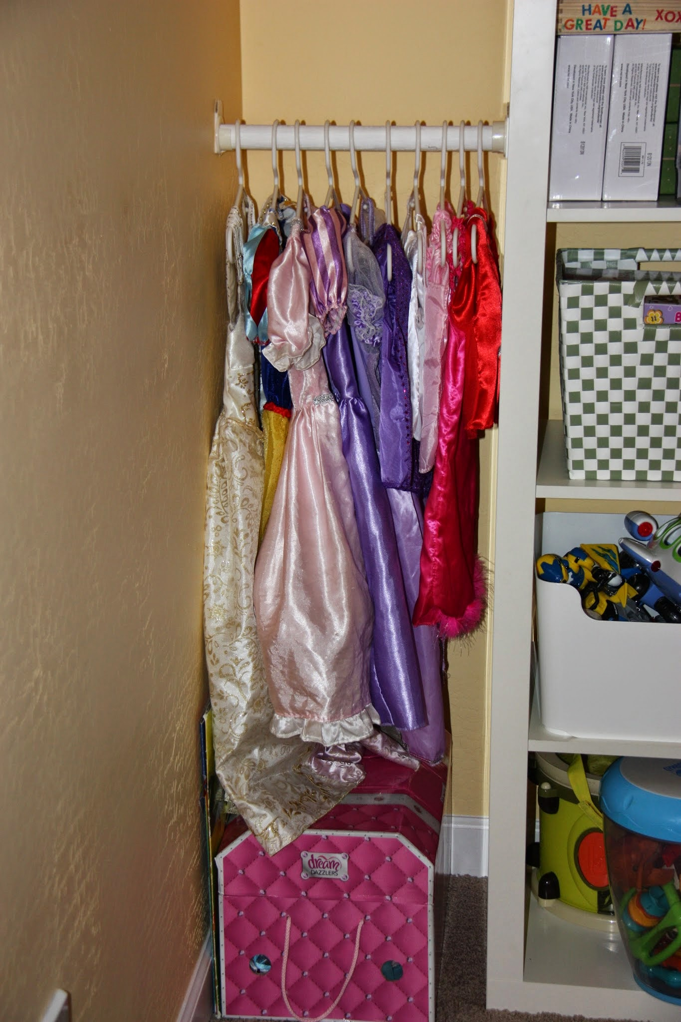 Dress Up Costume Organization