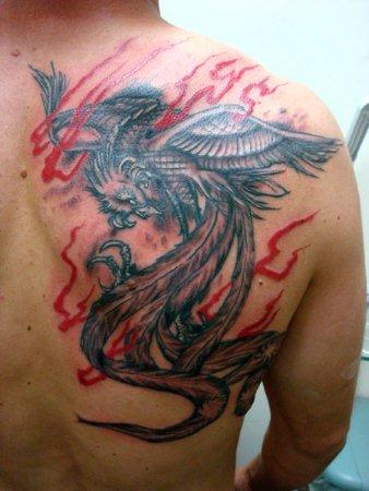 tatuagem fenix