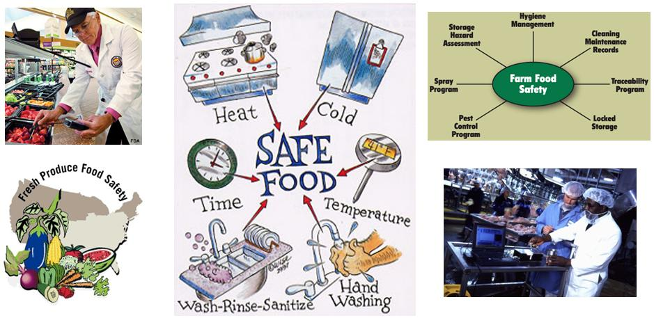 ASSESSMENT OF FOOD SAFETY HANDLING PRACTICES