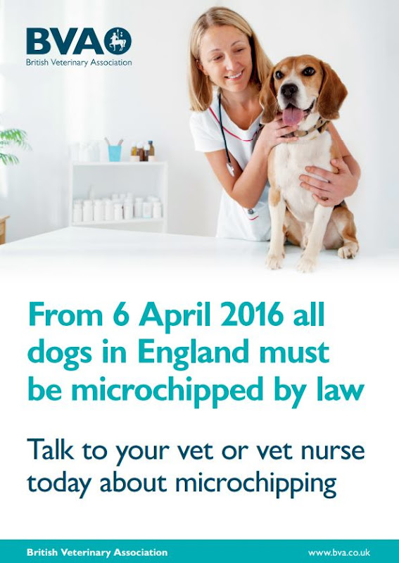 Get Your Dog Microchipped In Luton