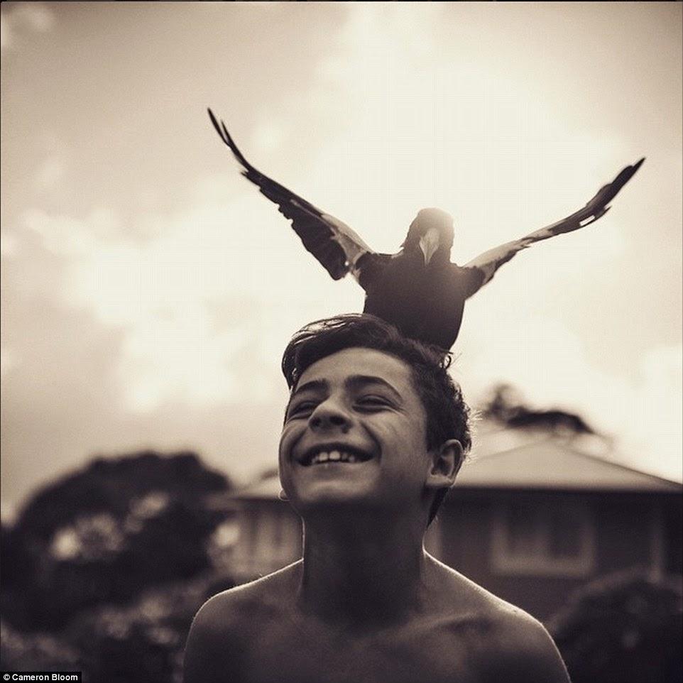 يطير الغراب فوق رأس أصحابه