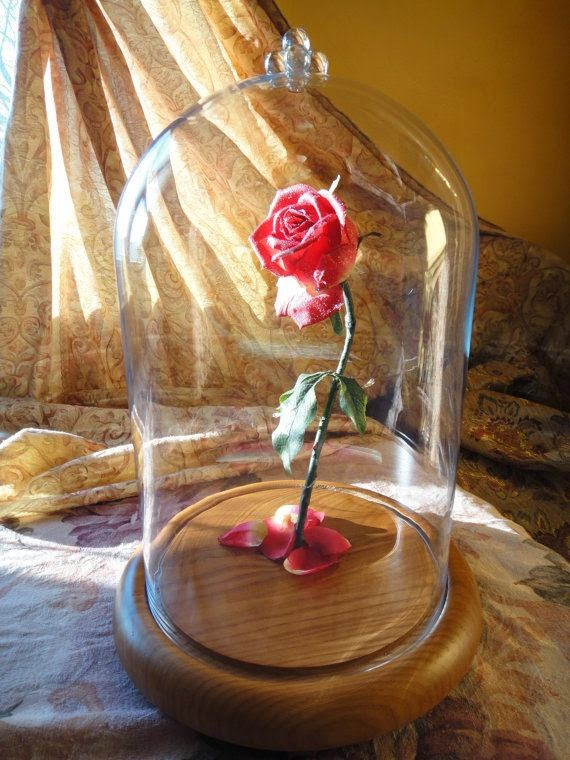 cvet ruza