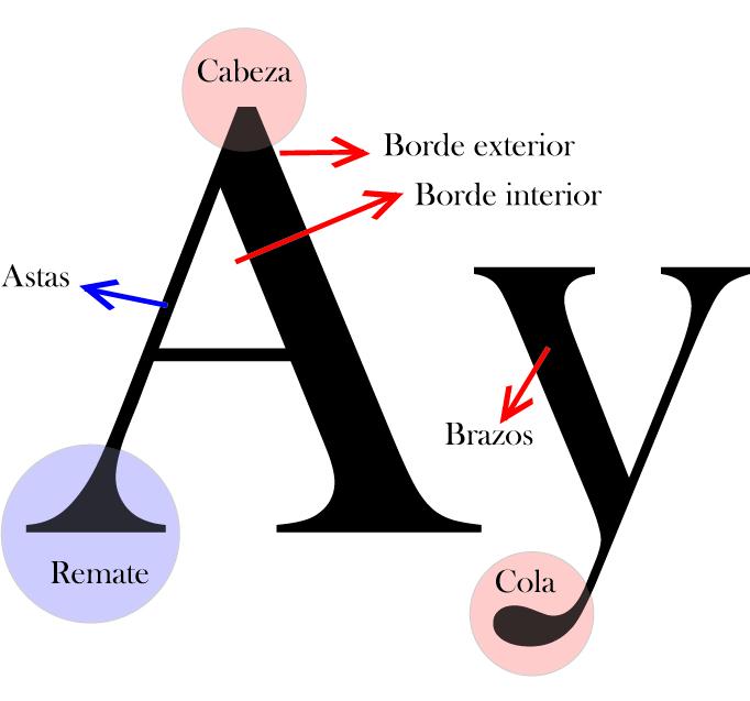 Sobre Tipografía: Anatomía del Tipo