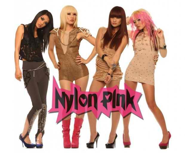 nylon-pink-.jpg