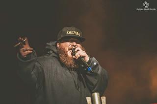 Rapture 2014 Melbourne - Eminem, 360, Action Bronson, J Cole & Kendrick Lamar michelle grace hunder