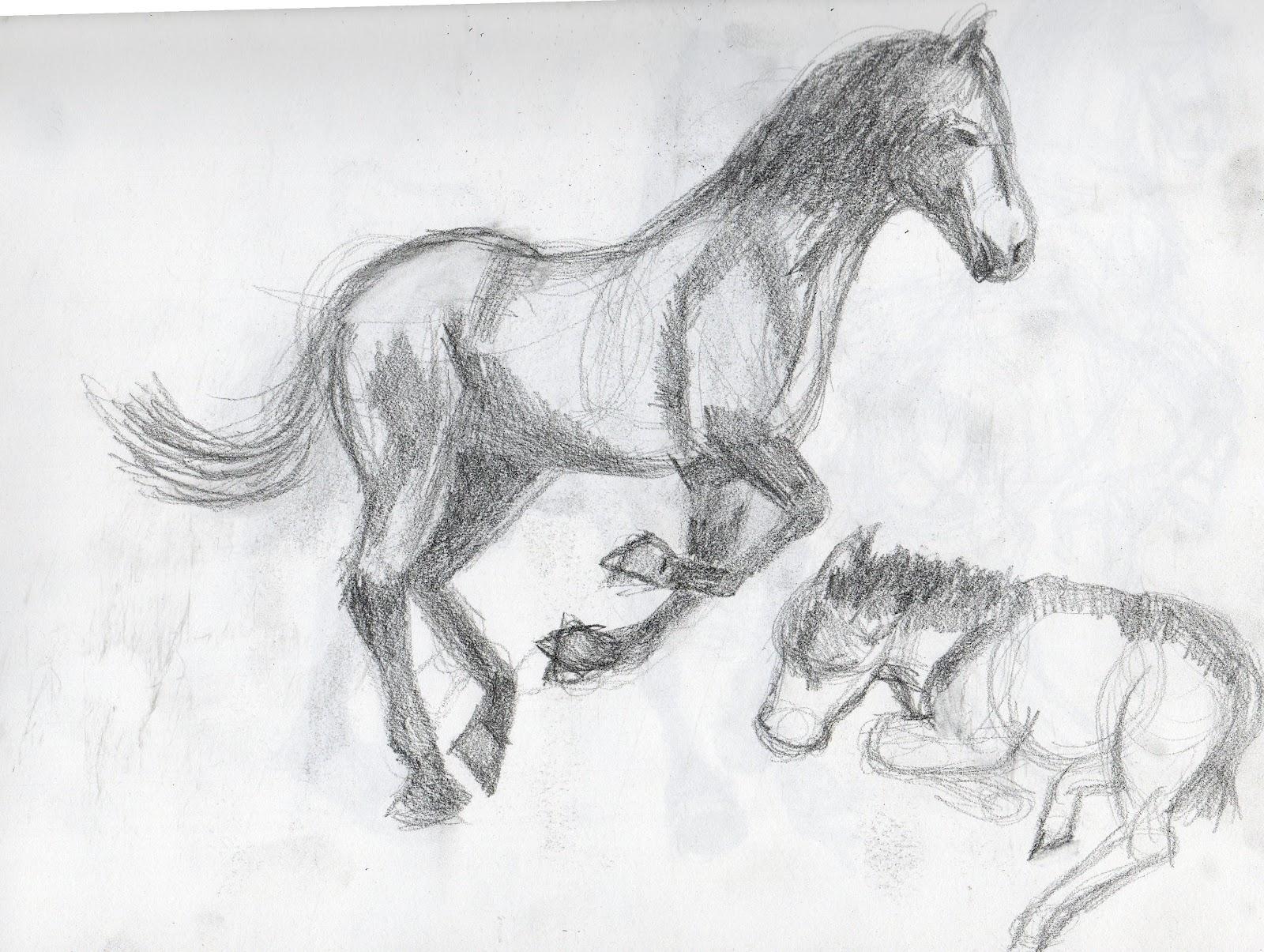 britt u0027s graphics animal drawing practice horses
