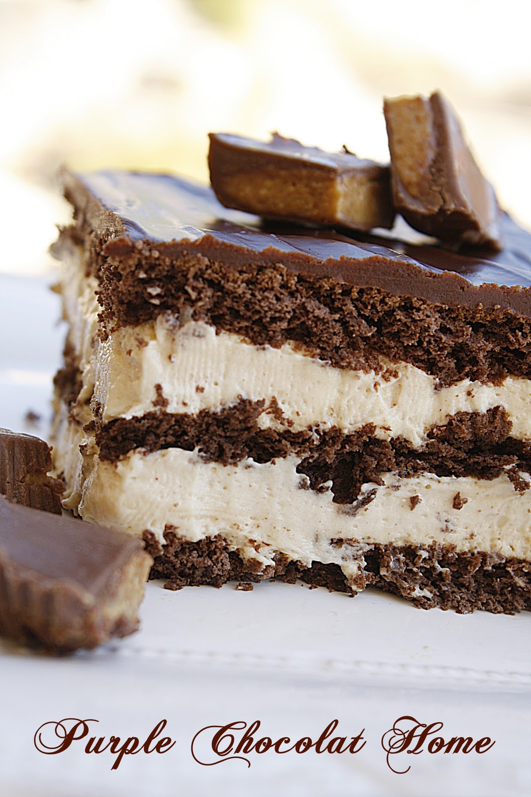 Chocolate Eclair Dessert With Chocolate Chips