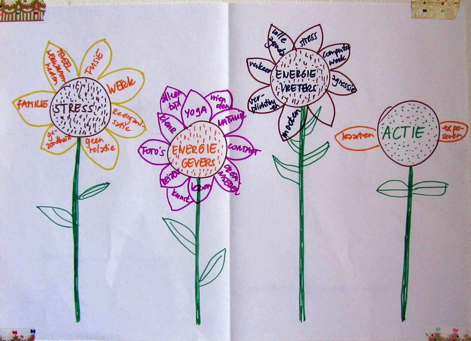 drawing: four sunflowers