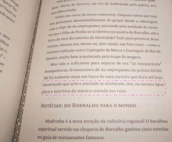 frase livro Cida a empreguete um diário íntimo