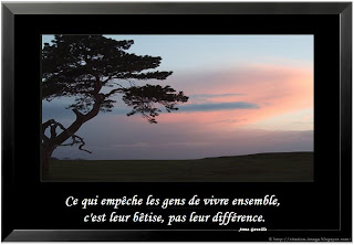photo du citation du jour dle