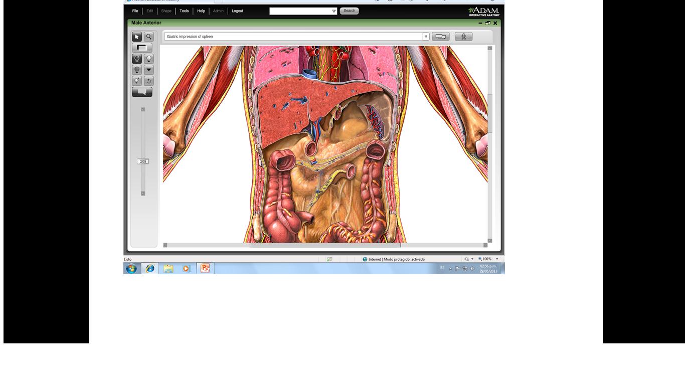 Los ejercicios físicos a la osteocondrosis sheynom la osteocondrosis
