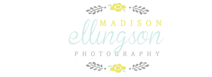 Madison Ellingson Photography