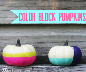color block pumpkins
