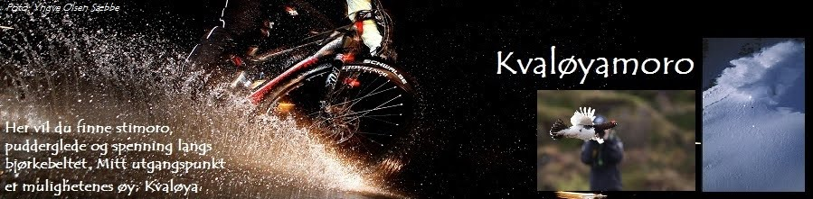 Sykkel, ski, pudder og sånn...