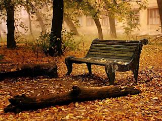 Autumn Fall Nature Wallpaper for Desktop