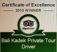 Bali Kadek Private Tour Driver