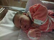 Nasceu Lívia, dia 25/11/2010