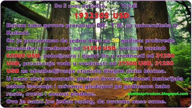 vrednost drveta