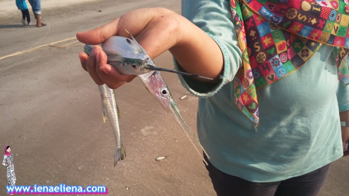 Sepagi Bersama Nelayan